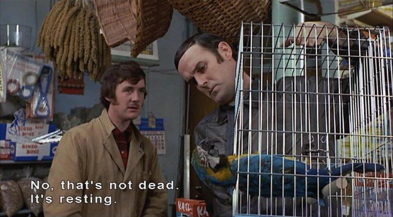ex-parrot