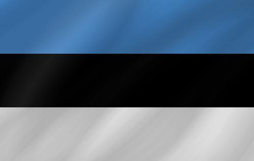 Estonia small flag waving