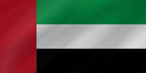 United Arab Emirates flag small