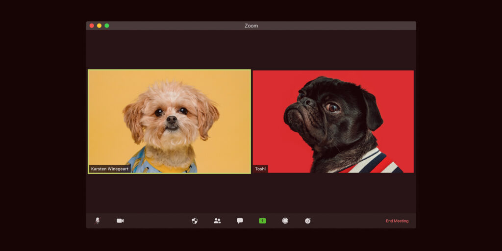 Doggos on Zoom talking, with custom yellow and red backgrounds